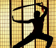 Swordsman silhouette Royalty Free Stock Images