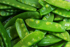 Swow peas cooked, food background Royalty Free Stock Photos