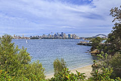 Sy CBD Bradley Bay Trees Stock Images