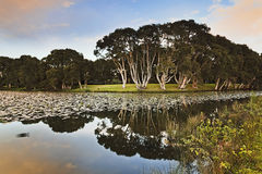 Sy Cent Park Pond Reflect Royalty Free Stock Photography