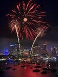 Sy Firework 2013 Palm Vert Stock Photos