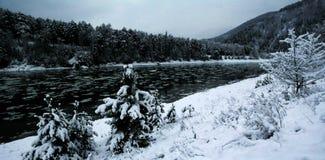 Syberia biała zima, znęcona natura zdjęcia stock