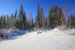 Syberyjska tajga przy rzecznym Olkha w Baikal regionie w zimie Obraz Stock