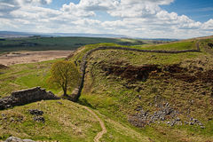 Sycamore Gap on Hadrian's Wall Royalty Free Stock Images