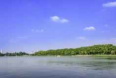 sycamore trees along The Xuanwu lake royalty free stock photo