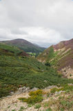 Sychnant Pass, United Kingdom mountain valley. Fern and Heather. Stock Photography