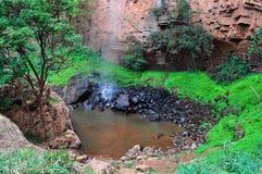 Sydafrika som är östlig, Mpumalanga landskap Royaltyfria Bilder