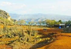Sydamerika Venezuela landskap av den Faro ön arkivbild