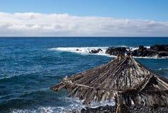 Sydkust av madeira Royaltyfri Bild