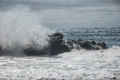 Sydlig ö Nya Zeeland för höstlandskap Arkivfoto