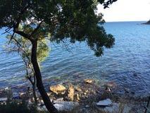 Sydlig kust av Crimeaen Arkivfoton