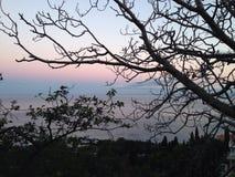 Sydlig kust av Krimet på solnedgången Royaltyfri Fotografi