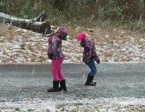 Sydlig snöstorm Royaltyfri Bild