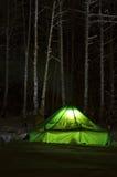 sydlig ural vinter Royaltyfria Bilder