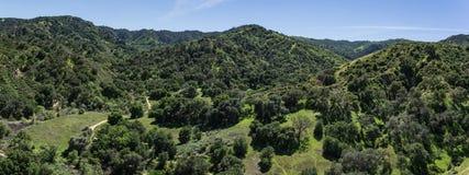 Sydliga Kalifornien kullar och skog Royaltyfria Foton