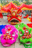Sydliga Lion Dance på ögonöppningscermoni, pagod för dam Thien Hau, Vietnam Fotografering för Bildbyråer