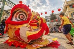 Sydliga Lion Dance på ögonöppningscermoni, pagod för dam Thien Hau, Vietnam Royaltyfria Foton