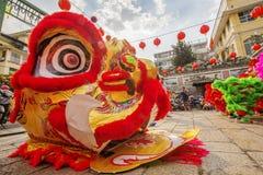 Sydliga Lion Dance på ögonöppningscermoni, pagod för dam Thien Hau, Vietnam Arkivfoto