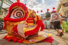 Sydliga Lion Dance på ögonöppningscermoni, pagod för dam Thien Hau, Vietnam Arkivbilder
