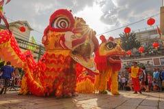 Sydliga Lion Dance på ögonöppningscermoni, pagod för dam Thien Hau, Vietnam Royaltyfri Fotografi