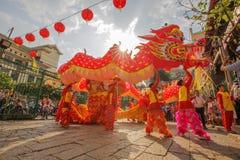 Sydliga Lion Dance på ögonöppningscermoni, pagod för dam Thien Hau, Vietnam Arkivfoton
