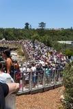 Sydney aan het rasbegin van Hobart royalty-vrije stock afbeelding