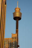 Sydney, AMP tower in the city. AMP Sydney tower in the city surrounded by office buildings Stock Photography