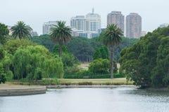 SYDNEY, AUSTRALIË - NOVEMBER 24, 2014: Sydney Centennial Park en Cityscape op Achtergrond Stock Afbeeldingen