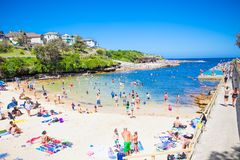Clovelly sendy beach in Sydney, Australia. Royalty Free Stock Photo