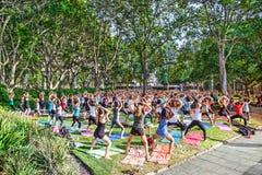 Free classes joga at Hyde park  in Sydney, Australia. Stock Image