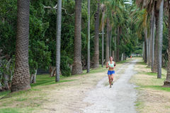 SYDNEY, AUSTRALIA - NOVEMBER 24, 2014: Runner Runs in Sydney Centennial Park, Australia. Stock Photos