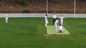 SYDNEY, AUSTRALIA - 30 novembre 2014: una panoramica di due gruppi che fanno concorrenza in un gioco del cricket immagini stock libere da diritti