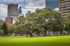 SYDNEY AUSTRALIA, PAŹDZIERNIK, -, 27: Ciemniutki park - miejsce dla recrea Obrazy Royalty Free