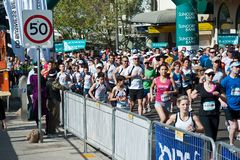 Crowds running on the road through the streets of Sydney for a fun run stock photos