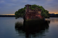 Sydney, Australia, The sunrise with shipwreck on the reef, Homeb Stock Photography