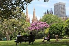 Sydney Botanical Gardens and the Sydney skyline Stock Photo