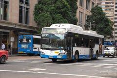 Sydney bussar spring på George gata, en av Sydney den offentliga traen royaltyfri bild