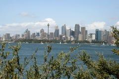 Sydney city landscape stock photography