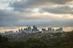 Sydney city during sunset. View of Sydney city during sunset from north area Royalty Free Stock Image