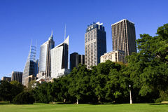 Sydney city tall skyscrapers buildings. Tall buildings in Sydney city, Australia, from Botanic Gardens Stock Images
