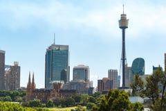Sydney cityscape med domkyrkan och Sydney Tower för St Marys Arkivbilder