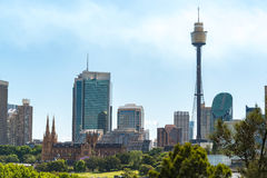 Sydney cityscape with St Marys Cathedral and Sydney Tower Stock Images