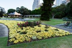 SYDNEY - 12 de octubre: Sydney Royal Botanic Garden el 12 de octubre de 2017 en Sydney Imagen de archivo libre de regalías