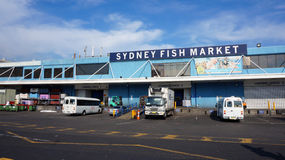Sydney Fish Market Photos stock