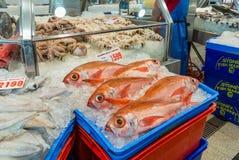 Sydney Fish market Stock Photos