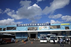 Sydney Fish Market Royalty Free Stock Photography