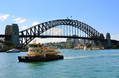 Sydney habour bridge in summer Royalty Free Stock Photo