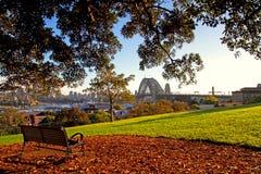 Sydney-Hafen-Brücke angesehen vom Park Lizenzfreies Stockfoto