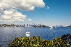 Sydney harbor and downtown buildings Stock Photos