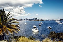 Sydney harbor and downtown buildings Stock Images